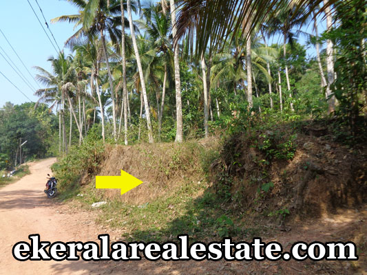 urgent sale land plots sale at Nettayam Malamukal trivandrum Nettayam Malamukal real estate properties trivandrum kerala