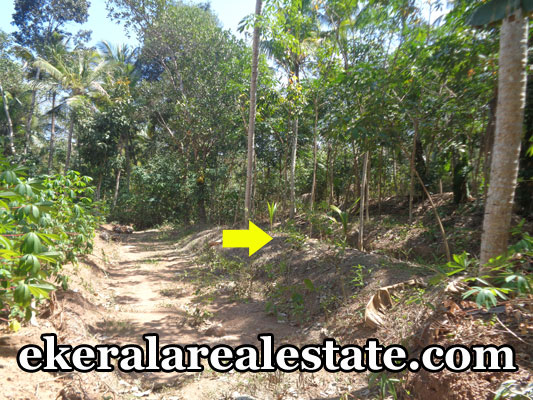 Sreekaryam Chenkottukonam thiruvananthapuram land house plots sale Sreekaryam Chenkottukonam real estate properties trivandrum