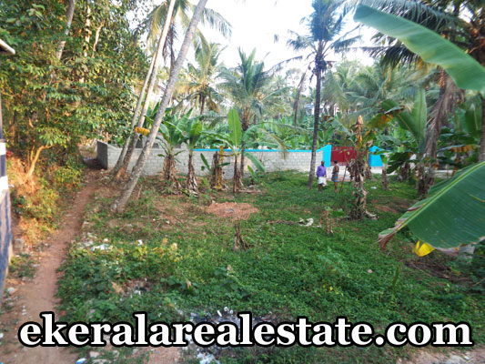peyad chanthamukku thiruvananthapuram land house plots sale peyad chanthamukku real estate properties trivandrum