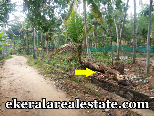 balaramapuram trivandrum land 10 cents land plots sale kerala real estate properties trivandrum balaramapuram trivandrum
