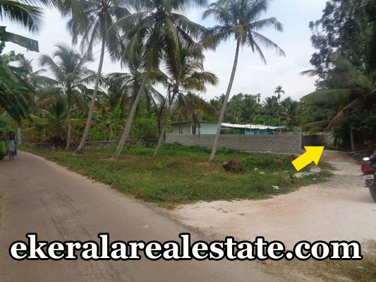 Pangappara thiruvananthapuram land house plots 5 cents sale Pangappara real estate properties trivandrum