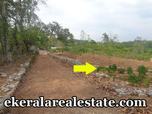 Karakulam Keltron Jn trivandrum land 52 cents land plots sale kerala real estate properties trivandrum Karakulam Keltron Jn trivandrum