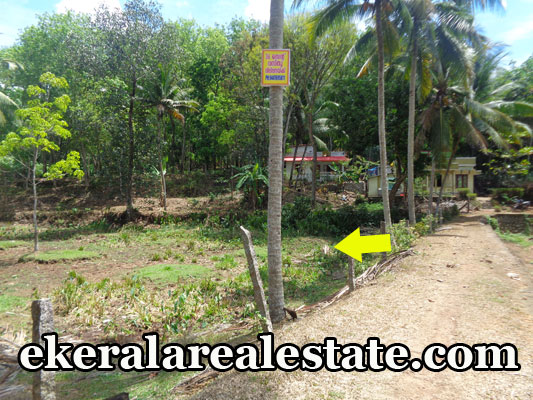 nanniyode palode thiruvananthapuram land house plots 36 cents sale nanniyode palode real estate properties trivandrum