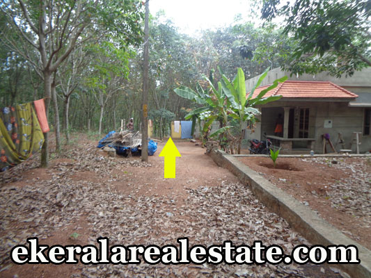 thiruvananthapuram-amaravila-land-plots-rubber-land-sale-amaravila-real-estate-kerala-real-estate