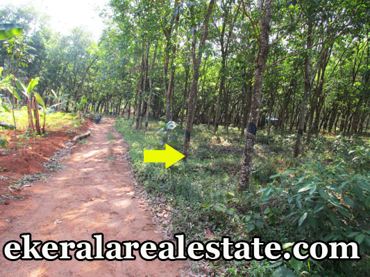 Venjaramoodu-trivandrum-residential-land-house-plots-sale-trivandrum-real-estate-properties-kerala