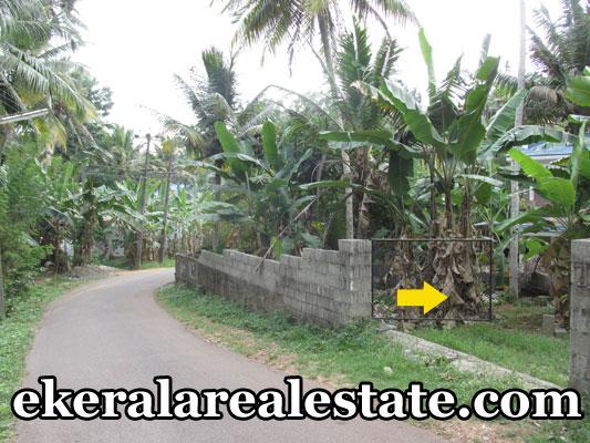 Vattappara-trivandrum-residential-land-house-plots-sale-trivandrum-real-estate-properties-kerala