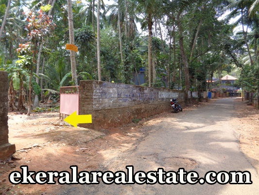 land for sale at Kanjiramkulam PKS High school real estate trivnadrum Kanjiramkulam PKS High school properties