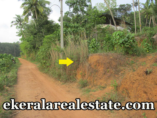 lorry access plot for sale at Attingal Kaduvayil palli real estate trivnadrum Attingal Kaduvayil palli properties trivnadrum