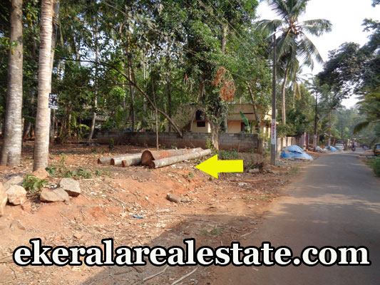 29 cent land for sale at Vizhinjam Venniyoor real estate properties Vizhinjam Venniyoor kerala trivandrum