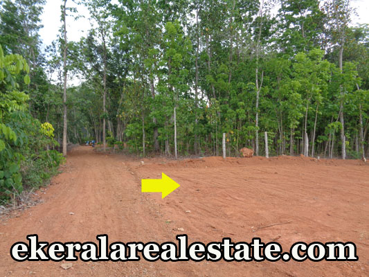 house land plot for sale at Neyyattinkara real estate trivnadrum Neyyattinkara properties kerala