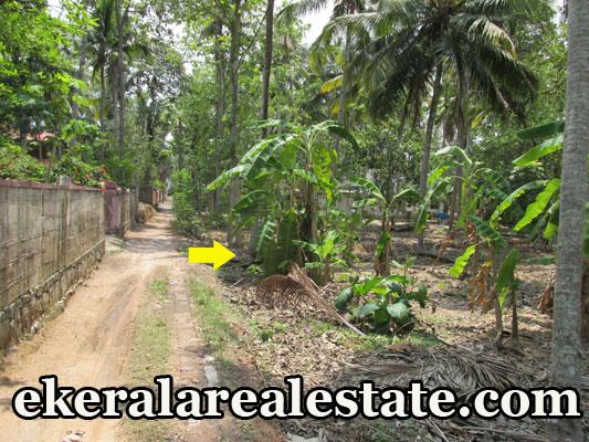 Residential house plot for sale at Thonnakkal Mangalapuram Trivandrum real estate trivandrum Thonnakkal Mangalapuram Trivandrum properties kerala