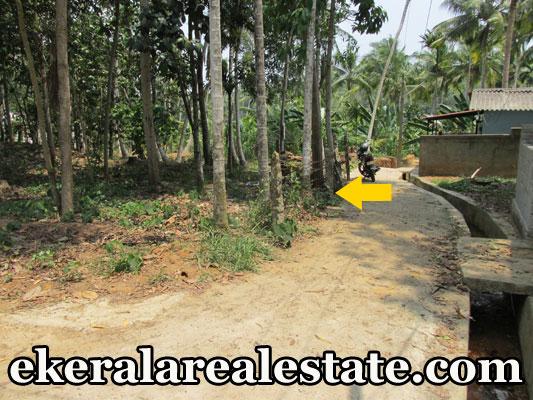 residential plot for sale at Nims Hospital Neyyattinkara real estate properties kerala trivandrum Nims Hospital Neyyattinkara properties