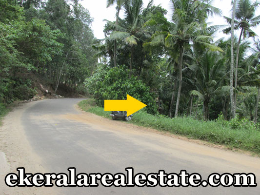 residential plot for sale at Kallayam Mukkola real estate properties kerala trivandrum Kallayam Mukkola properties