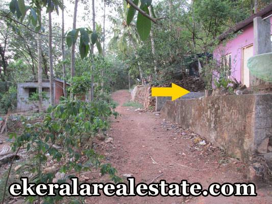 Parayankavu Nedumangad residential land for sale trtivnadrum real estate properties Parayankavu Nedumangad land sale