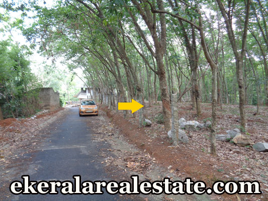 Moongode Thachottukavu residential land for sale at trivandrum real estate kerala properties Moongode Thachottukavu