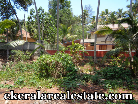 Vizhinjam Chappath Trivandrum residential house plot for sale at trivandrum kerala real estate properties
