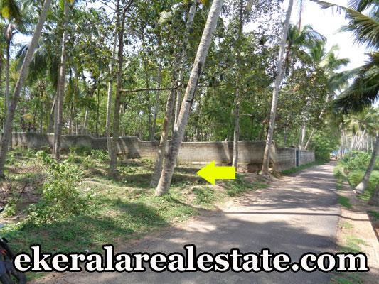 residential house plot for sale at VedivechanKovil Balaramapuram real estate kerala land sale