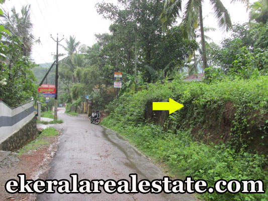 tar road frontage Karipur Nedumangad Trivandrum residential land for sale at Karipur Nedumangad Trivandrum real estate