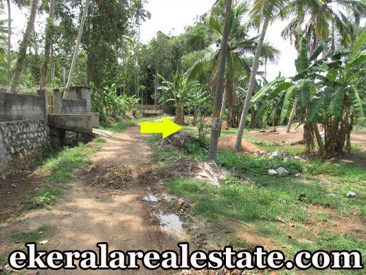 house plot for sale at Near Attingal Mamom Trivandrum Attingal Real Estate trivandrum kerala properties