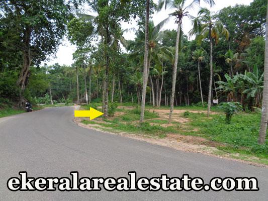 Venjaramoodu Vembayam Thempammoodu Jn 10 sent land for sale at Venjaramoodu Vembayam Thempammoodu Jn real estate properties sale