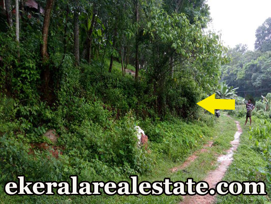 Thattathumala Kilimanoor Trivandrum Kilimanoor house plot for sale at Thattathumala Kilimanoor Trivandrum real estate kerala