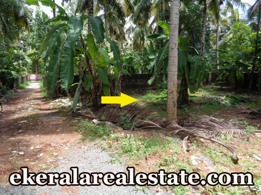 5 Cents House Plot Sale at Kurishadi Junction Nalanchira Trivandrum Kerala Real Estate Nalanchira Trivandrum Properties