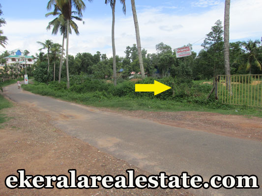 Land for Sale at Attingal Mamam Trivandrum Kerala Real Estate Properties Attingal Trivandrum Land Sale