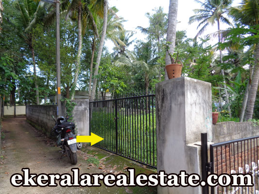 10 lakhs per cent land plot for sale at Pananvila Parottukonam Paruthippara Nalanchira Trivandrum real estate kerala trivnadrum