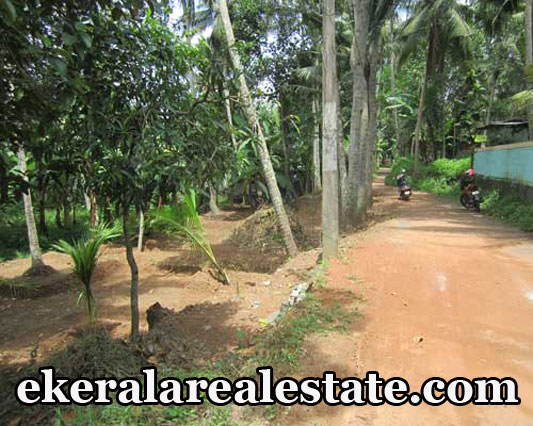 28 cent House Plots Sale at Pravachambalam Trivandrum Kerala Pravachambalam Real Estate Properties