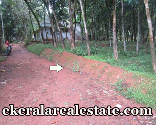 20 cent house plot for sale at Chempanacode Keezharoor Rd Kattakada real estate trivnadrum Chempanacode Keezharoor Rd Kattakada