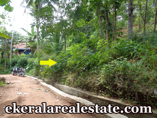 2.5 lakhs per cent residential land for sale at Kollamkonam Peyad Trivandrum real estate trivandrum Kollamkonam Peyad Trivandrum