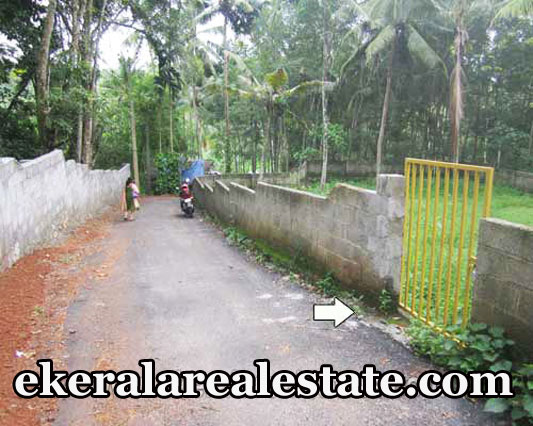 Residential Land Sale at Njandoorkonam Sreekaryam Price Below 3 Lakhs Per Cent Trivandrum