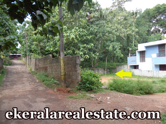 5 cent Plots Sale at Thaivila Mangattukadavu Thirumala Trivandrum Thirumala Real Estate