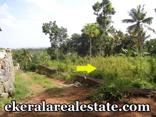 House Land Plots Sale at Kallayam Mukkola Trivandrum Kallayam Real Estate Properties