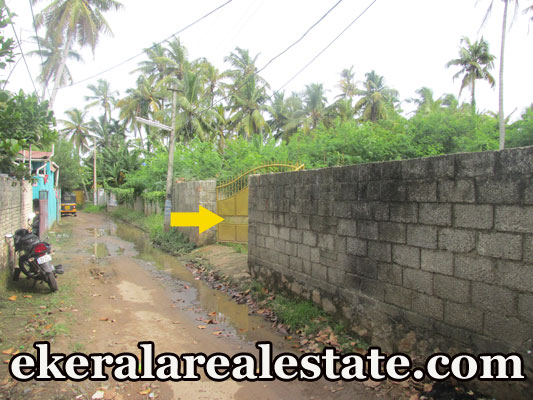 Residential Land Plots Sale at Kamaleswaram Manacaud Trivandrum Kamaleswaram Real Estate