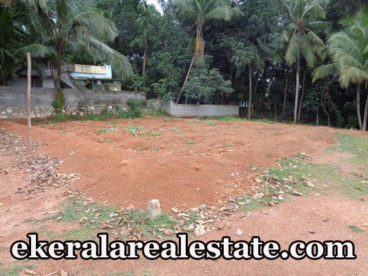 Lorry access plot for sale at Residential Land Sale at Poovachal Kattakada Trivandrum Poovachal Real Estate Properties