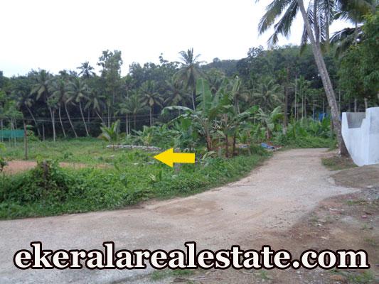 16 cent house plot for sale at Palode Nedumangad real estate kerala trivandrum land sale Palode Nedumangad