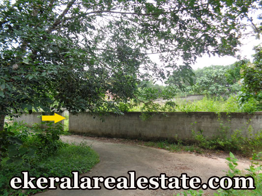 lorry access plot for sale at Pullanivila Kariavattom Trivandrum Kariavattom real estate kerala trivandrum Pullanivila Kariavattom Trivandrum Kariavattom