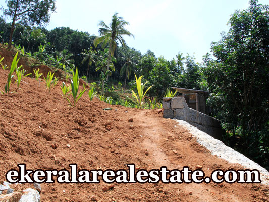 Residential plot Price Below 2 Lakhs Per Cent Sale at Cheriyakonni Vattiyoorkavu Trivandrum Kerala Vattiyoorkavu