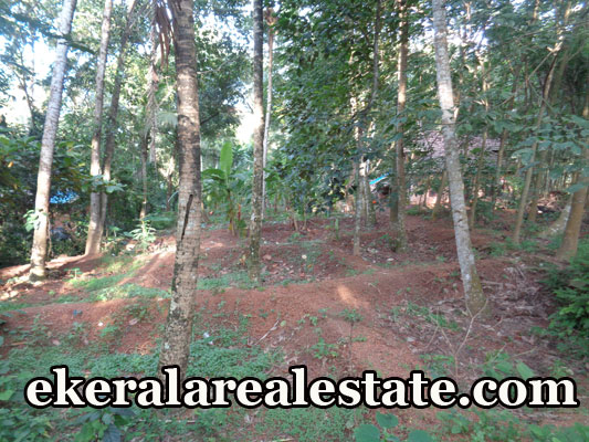 plot for sale at Naruvamoodu Pravachambalam Trivandrum real estate kerala properties sale