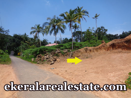 Road frontage land plot for sale at Powdikonam Sreekariyam real estate kerala trivandrum