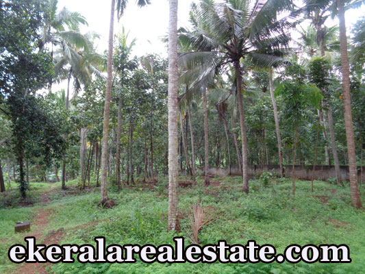 kerala house plot for sale at Meppookkada Malayinkeezhu Trivandrum real estate kerala trivandrum
