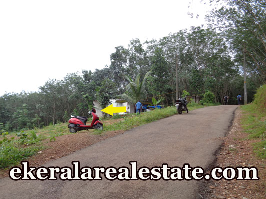 Residential Land For Low price Sale in Karipur Nedumangad Trivandrum kerala Real Estate Properties Kerala