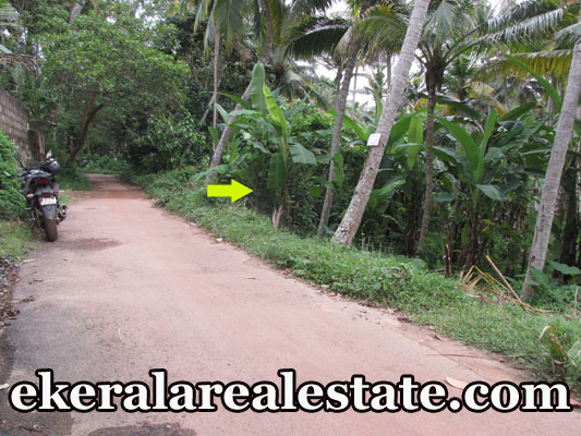 kerala real estate house plot for sale at Mangattukadavu Thirumala real estate trivandrum kerala