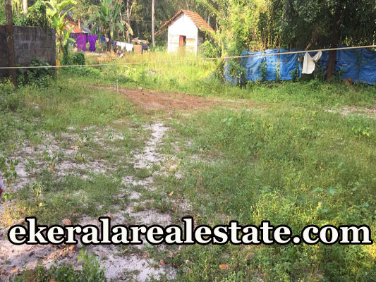 24 cent house plot for sale at Purushan Kavala Cherthala Alappuzha real estate kerala properties