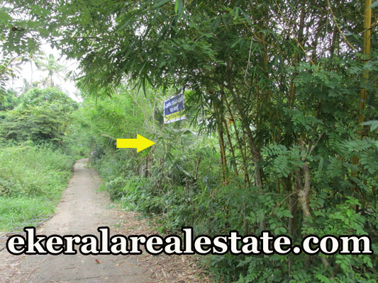 plot for sale at Kadakkavoor Trivandrum real estate trivandrum properties sale