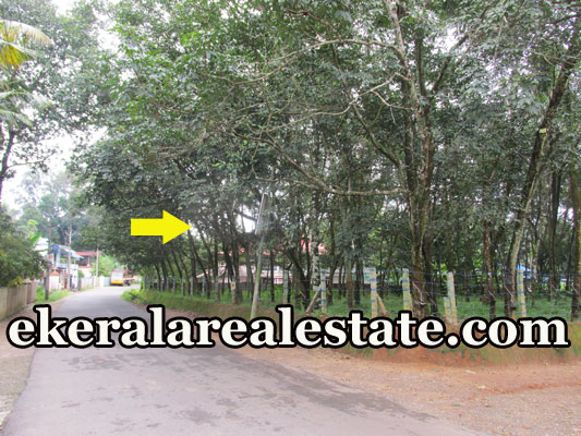 3 lakhs per Cent house plot for sale at Palamukku Panachavila Anchal Kollam real estate kerala