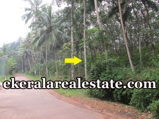 Aryanad Trivandrum plot for sale at Aryanad Trivandrum real estate kerala trivandrum