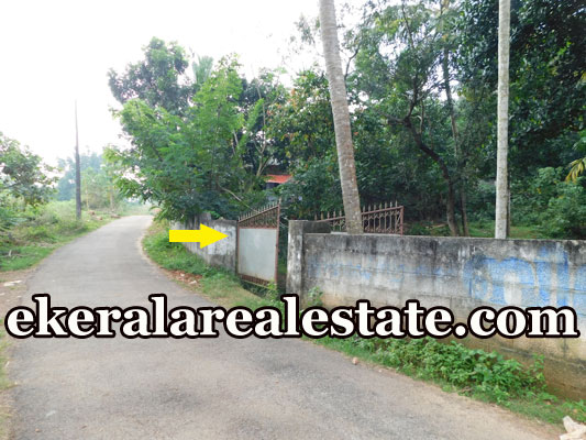 low price land for sale sale at Mavinmoodu Kallambalam Trivandrum Kallambalam real estate kerala