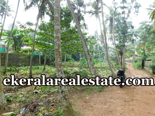 20 Cent plot for at Marayamuttom Neyyattinkara Trivandrum Neyyattinkara real estate kerala
